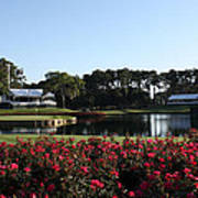 The Players - Tpc Sawgrass Island Green 17th Poster