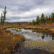 The Ponds Near Raquette Lake Poster
