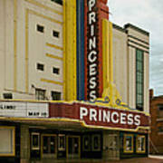 The Princess Theatre Poster