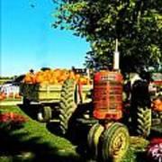 The Pumpkins Have Arrived Poster