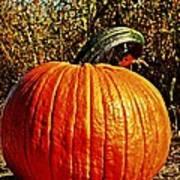 The Pumpkin Poster