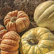 The Pumpkins Of Autumn Poster