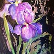 The Purple Iris Poster