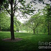 The Quiet Park Poster