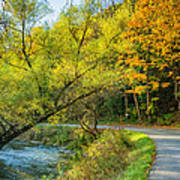 The River Road Curve Poster