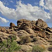 The Rock Garden Poster