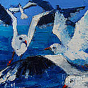The Seagulls Poster