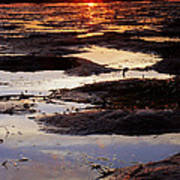 The Sky In The Mud At Low Tide Poster