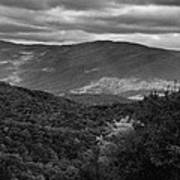 The Smokies In Black And White Poster