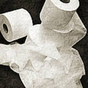 The Spare Rolls 1 - Toilet Paper - Bathroom Design - Restroom - Powder Room Poster