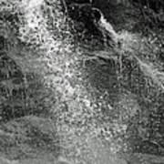 The Splash Poster