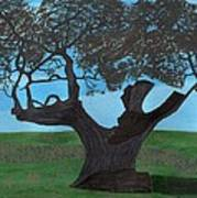 The Split Tree - Bradgate Park Poster by Bav Patel