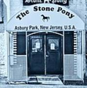 The Stone Pony Cool Poster