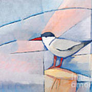 The Tern Poster