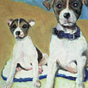 The Terriers Poster
