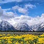The Teton Mountain Range In The Spring Grand Teton National Park Poster