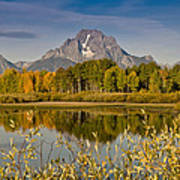 The Tetons And Fall Colors Poster