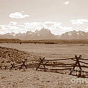 The Tetons In Sepia Poster