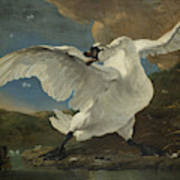 The Threatened Swan, Jan Asselijn Poster