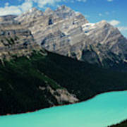 The Turquoise Colored Peyto Lake Poster
