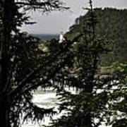 The View Of The Heceta Lighthouse Poster