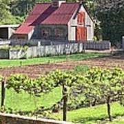The Vineyard Barn Poster