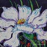 The White Flower Poster