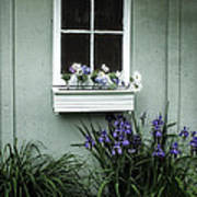 The Window Box Poster