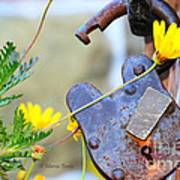 The Wise Owl Padlock - Cambria California  Poster