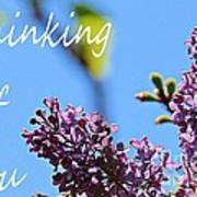 Thinking Of You - Greeting Card - Lilacs Poster