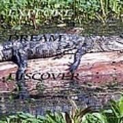 Thr Gator Poster