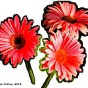 Three Bright Red Flowers Poster