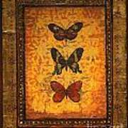 Three Butterflies One Poster
