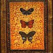 Three Butterflies Two Poster