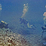 Three Divers In Hawaii Poster