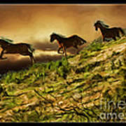 Three Horse's On The Run Poster