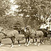 Three Team Four Wheel Cart Poster by Wayne Sheeler