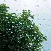 Through The Rain Poster