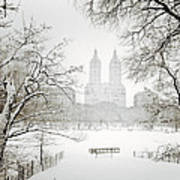Through Winter Trees - Central Park - New York City Poster