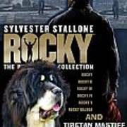 Tibetan Mastiff Art Canvas Print - Rocky Movie Poster Poster