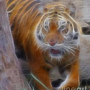 Tiger-5362-fractal Poster