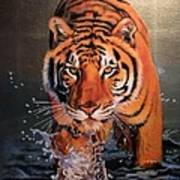Tiger Crossing Water Poster