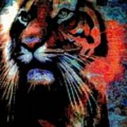Tiger In The Mist Poster