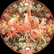 Tiger Lily Sphere Poster