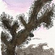 Tijuana Tree Poster