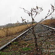 Tilted Tracks Poster