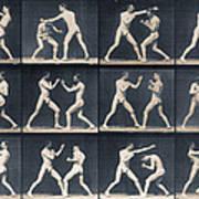 Time Lapse Motion Study Men Boxing Poster