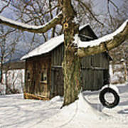 Tire Swing Shed Poster by Timothy Flanigan