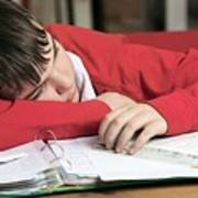 Tired Boy Asleep On His Homework Poster