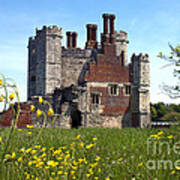 Titchfield Abbey Buttercups Poster